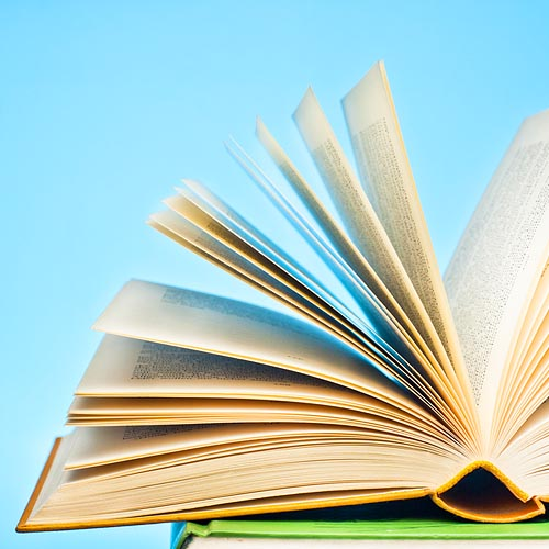 Offbeat literary genres to get lost in by dictionary com