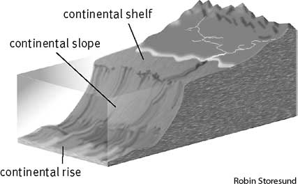 Continental rise define continental rise at for Ocean floor features definition