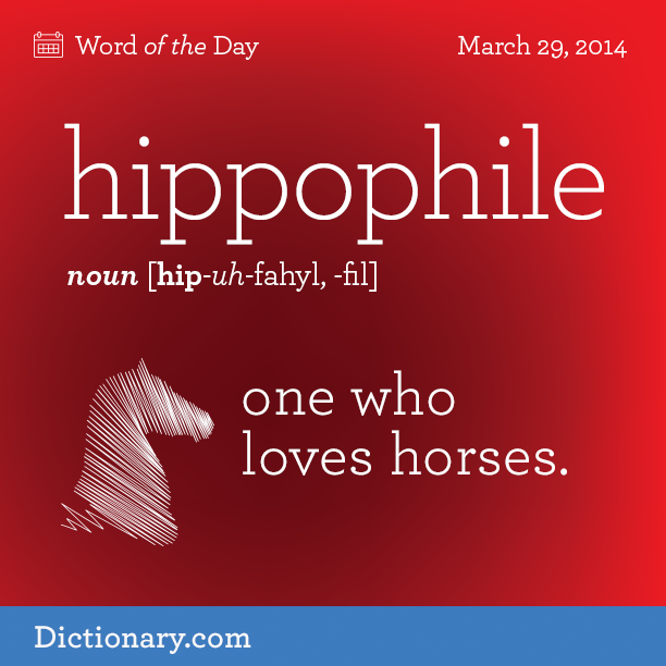 hippophile - Word of the Day