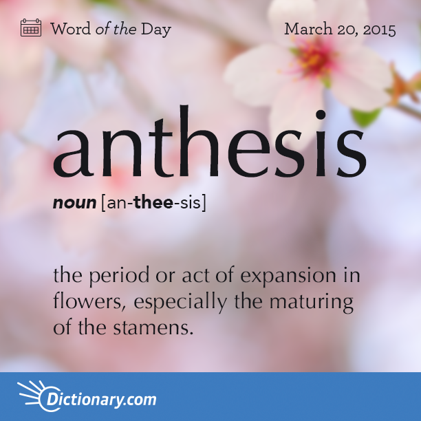 Thanks to thesaurus.com for the above and thefreedcitionary for the ...
