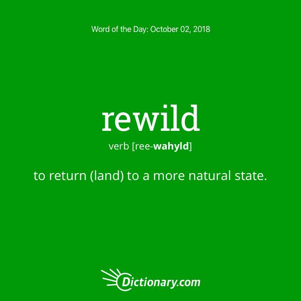 Get the Word of the Day - rewild | Dictionary.com
