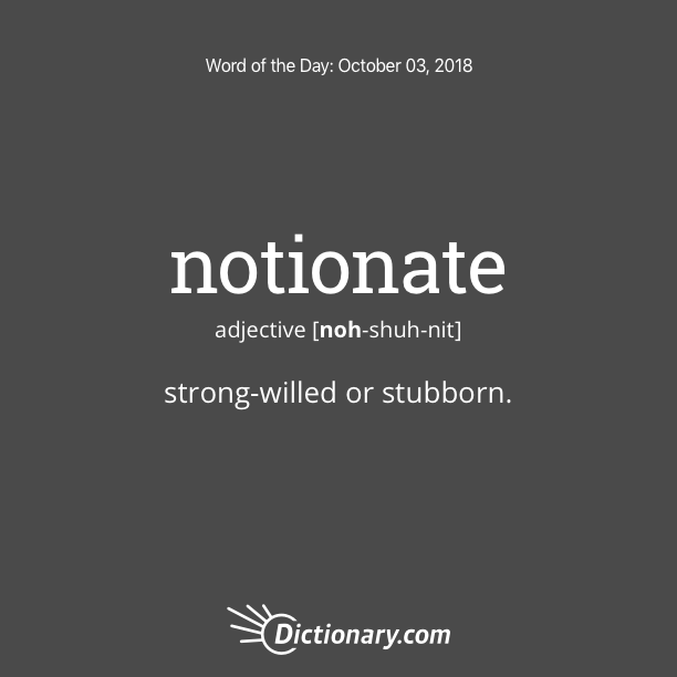 Get the Word of the Day - notionate | Dictionary.com
